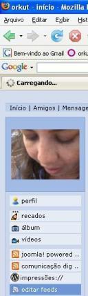 orkut1.jpg